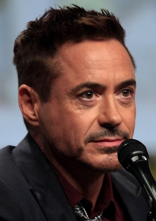 Robert Downey Jr 2014